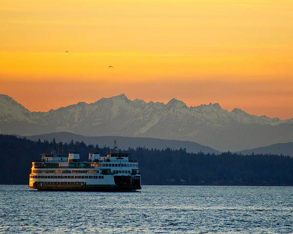Sunset Poster featuring the photograph Sunset Over Olympic Mountains by Dan Mihai