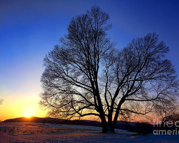 Valley Poster featuring the photograph Sunset Over Valley Forge by Olivier Le Queinec