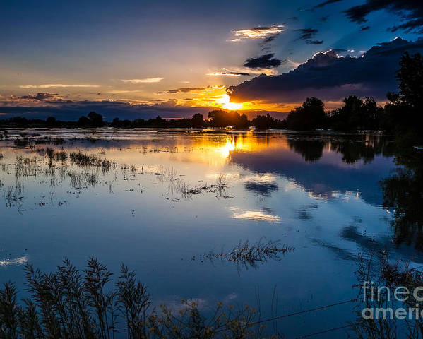 Nature Poster featuring the photograph Sunset Reflections by Steven Reed