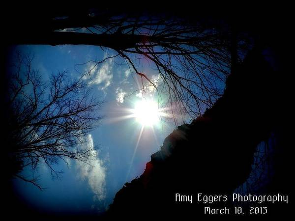 Landscapes Poster featuring the photograph Sunshine by Amy Eggers