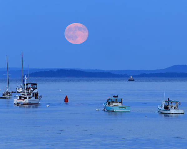 Super Moon Poster featuring the photograph Super Moon Hangs Over Belfast Harbor Maine by Barbara West
