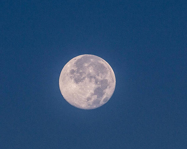 Super Moon Poster featuring the photograph Super Moon July 2014 by Renny Spencer
