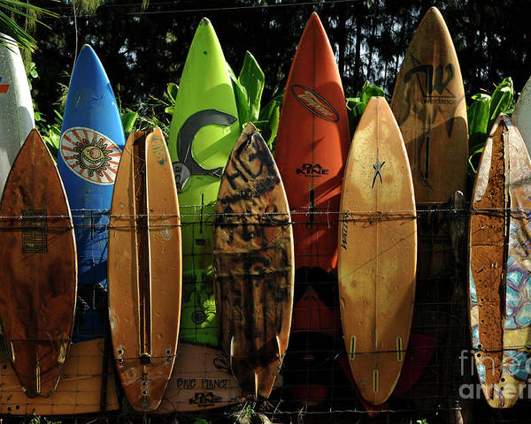 Hawaii Poster featuring the photograph Surfboard Fence 4 by Bob Christopher