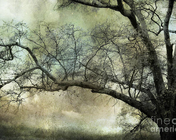 Surreal Nature Photos Poster featuring the photograph Surreal Gothic Dreamy Trees Nature Landscape by Kathy Fornal