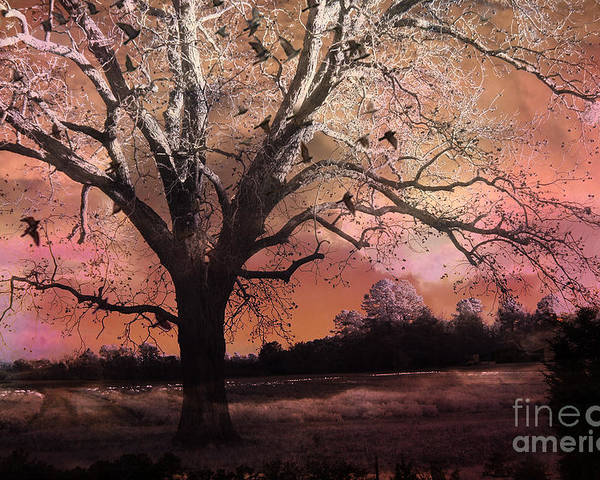 Surreal Pink Nature Photos Poster featuring the photograph Surreal Gothic Fantasy Trees Pink Sky Ravens by Kathy Fornal
