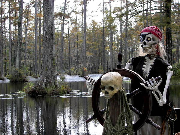 Pirates Poster featuring the photograph Swamp Pirate by Karen Wiles