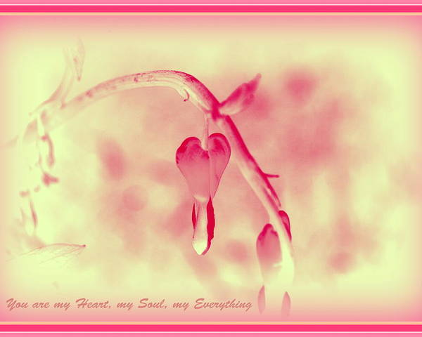 Love Poster featuring the photograph Sweet Heart by Kathy Sampson