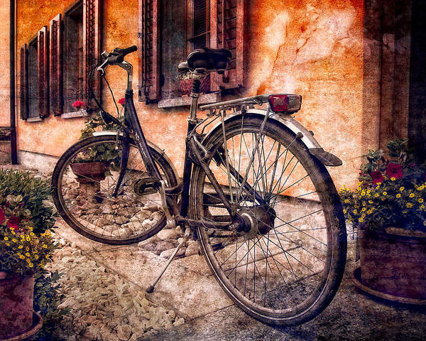 Barn Poster featuring the photograph Swiss Bicycle by Debra and Dave Vanderlaan