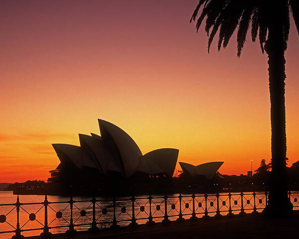 Sydney Poster featuring the photograph Sydney Harbour Sunrise by Inge Riis McDonald