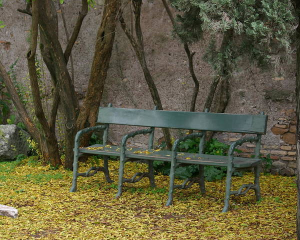 Bench Poster featuring the photograph Take A Rest by Anika Kanter