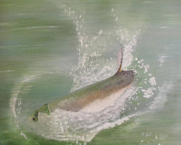 Tarpon Breaking Water Poster featuring the painting Tarpon Breaking Water by Tony Rodriguez