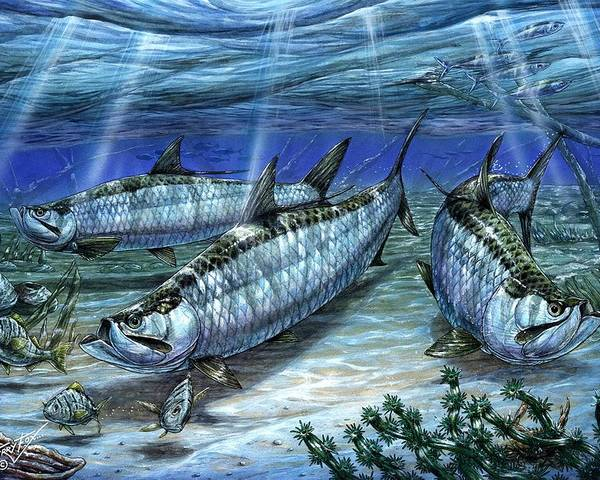 Tarpon Poster featuring the painting Tarpon In Paradise - Sabalo by Terry Fox