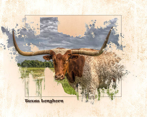 Texas Longhorn Poster featuring the digital art Texas Longhorn by Ray Keeling