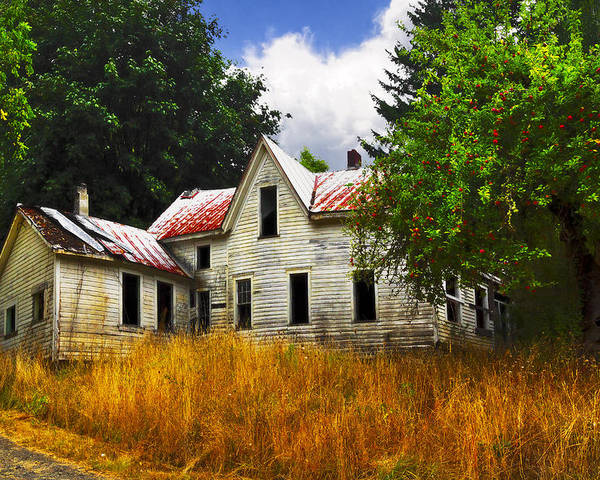Barn Poster featuring the photograph The Apple Tree On The Hill by Debra and Dave Vanderlaan