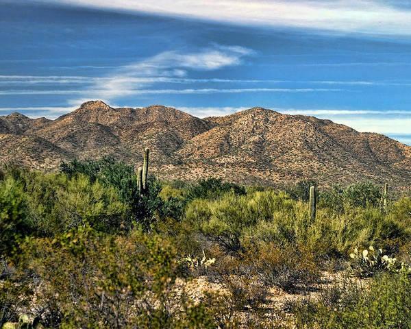 Desert Poster featuring the photograph The Beautiful Arizona Desert by Carolyn Fletcher