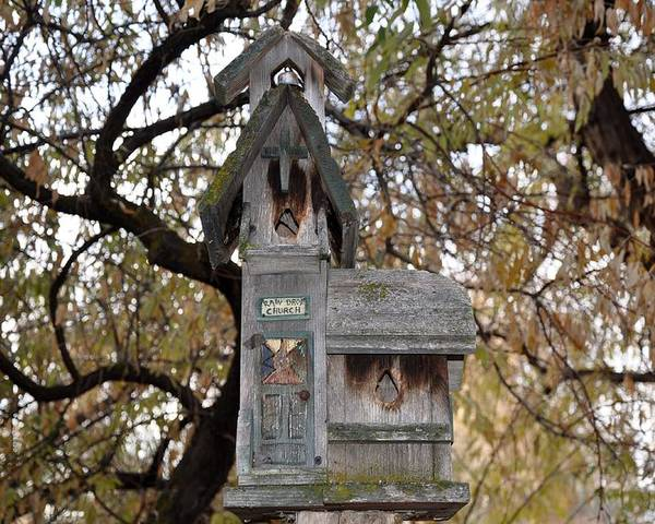 Melba; Idaho; Birdhouse; Shelter; Outdoor; Fall; Autumn; Leaves; Plant; Vegetation; Land; Landscape; Tree; Branch; House; Poster featuring the photograph The Birdhouse Kingdom - Black-headed Grosbeak by Image Takers Photography LLC - Carol Haddon