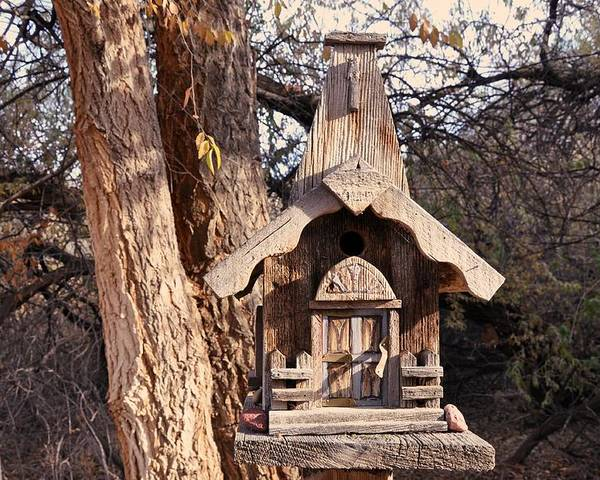 Melba; Idaho; Birdhouse; Shelter; Outdoor; Fall; Autumn; Leaves; Plant; Vegetation; Land; Landscape; Tree; Branch; House; Poster featuring the photograph The Birdhouse Kingdom - The Orange-crowned Warbler by Image Takers Photography LLC - Carol Haddon