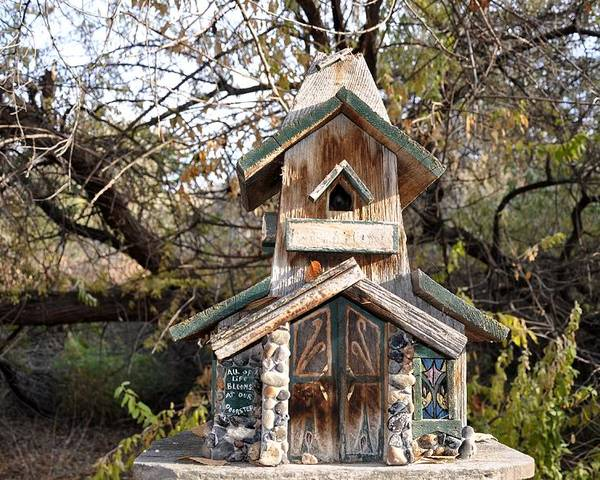 Melba; Idaho; Birdhouse; Shelter; Outdoor; Fall; Autumn; Leaves; Plant; Vegetation; Land; Landscape; Tree; Branch; House; Poster featuring the photograph The Birdhouse Kingdom - The Red Crossbill by Image Takers Photography LLC - Carol Haddon