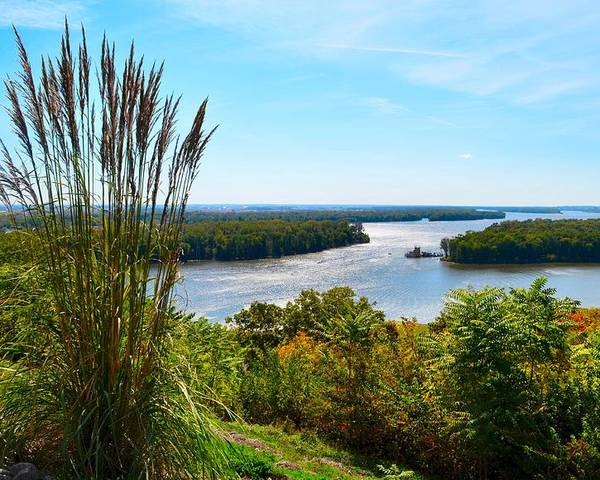 Mississippi River Scene Poster featuring the photograph The Confluence by Julie Dant
