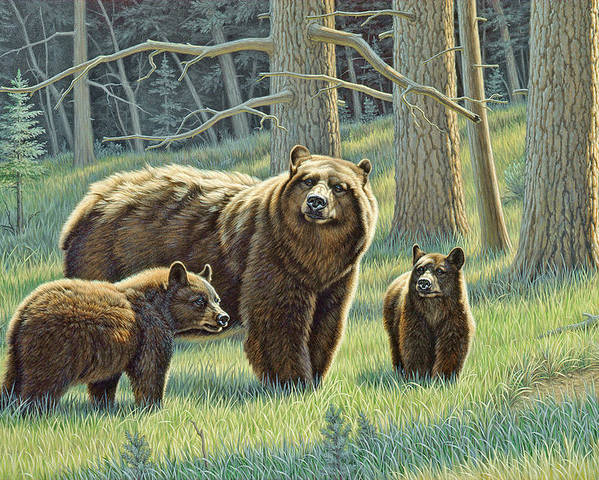Wildlife Poster featuring the painting The Family - Black Bears by Paul Krapf