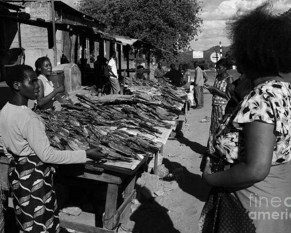 East Africa Poster featuring the photograph The Fish Market by Aidan Moran