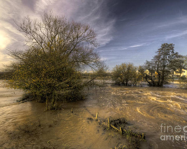 Stoke Canon Poster featuring the photograph The Floods At Stoke Canon by Rob Hawkins