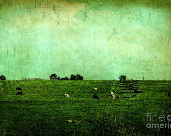 Trees Poster featuring the photograph The Green Yonder by Trish Mistric