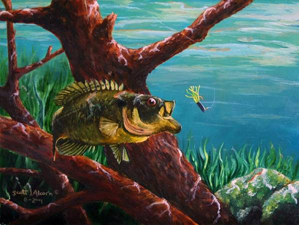 Fish Poster featuring the painting The Hit   Warmouth by Scott Alcorn