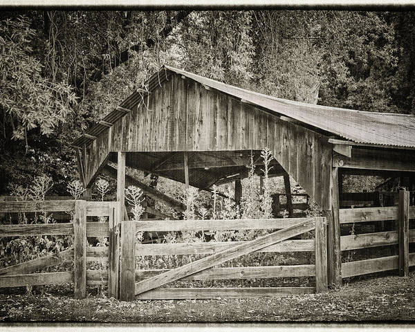Antique Poster featuring the photograph The Last Barn by Joan Carroll