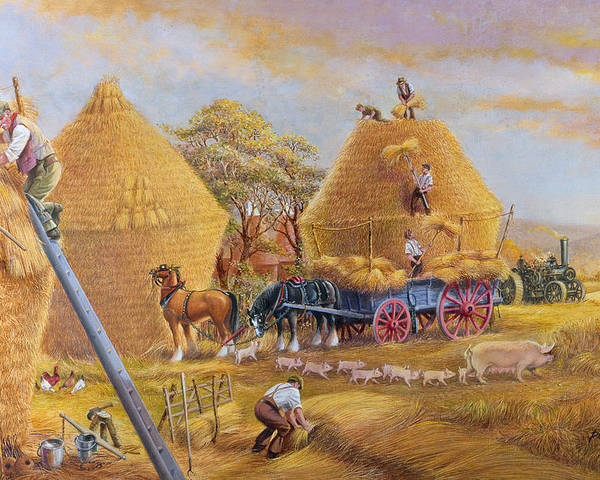 Haystacks; Stack; Hay; Stacking; Harvesting; Harvest; Farm; Field; Fields; Farmers; Laborers; Piglets; Pig; Sow; Steam; Engines; Ploughing; Engine; Shire Horse; Horses; Wagon; Cart; Rural; Livestock Poster featuring the painting The Last Load by Dudley Pout