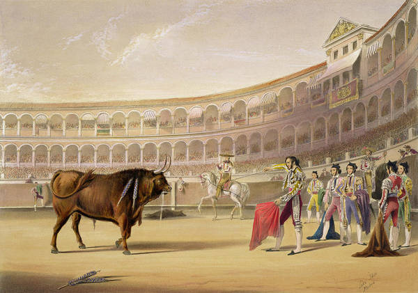 Plaza De Toros Poster featuring the drawing The Matador by William Henry Lake Price