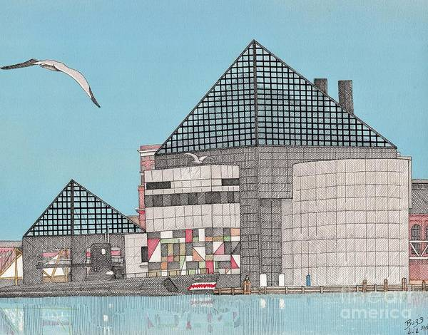 Baltimore Poster featuring the drawing The National Aquarium by Calvert Koerber