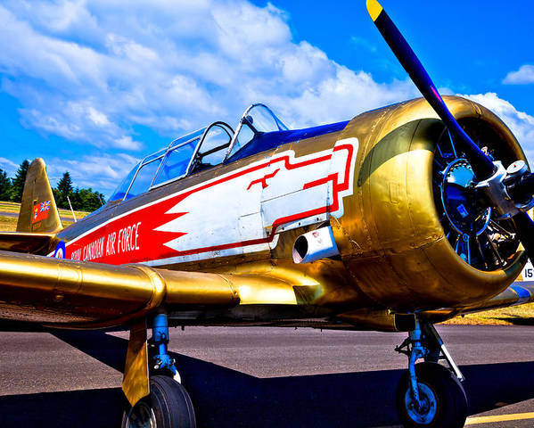 The North American T-6 Texan Poster featuring the photograph The North American T-6 Texan Airplane by David Patterson
