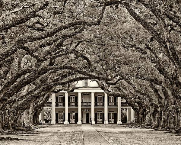 Oak Alley Plantation Poster featuring the photograph The Old South Sepia by Steve Harrington
