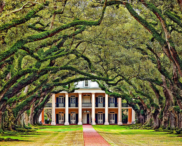 Oak Alley Plantation Poster featuring the photograph The Old South by Steve Harrington