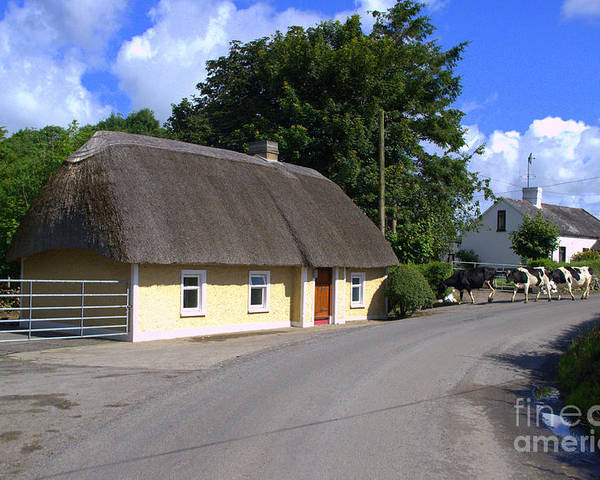 Thatched Cottage Poster featuring the photograph The Old Thatched Cottage by Joe Cashin
