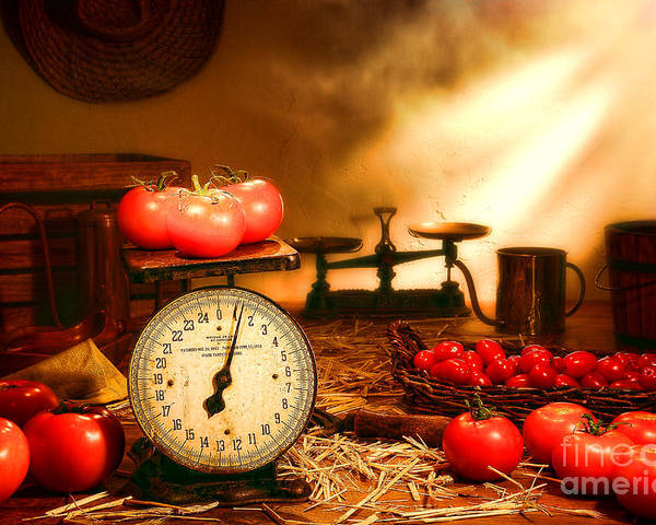 Tomatoes Poster featuring the photograph The Old Tomato Farm Stand by Olivier Le Queinec