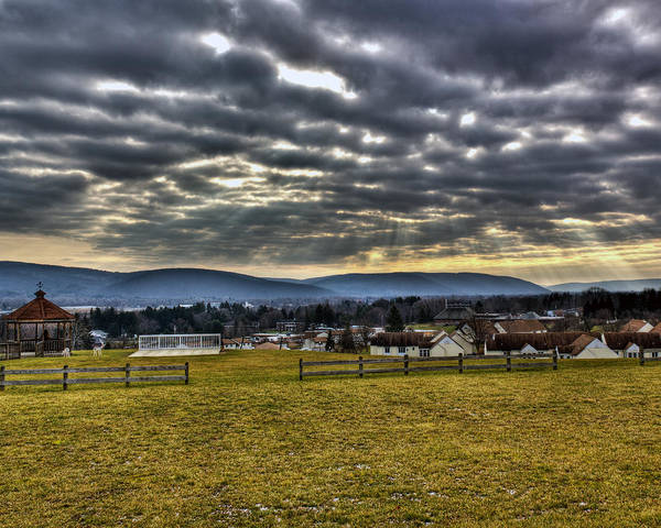 Horseheads Poster featuring the photograph The Perfect View by Tim Buisman