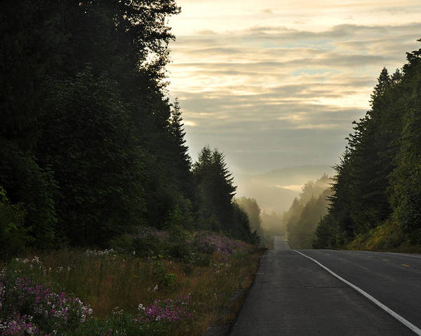 Olympic National Park Poster featuring the photograph The Road Less Traveled by Andrew Broom