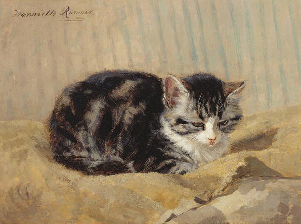 Cat Poster featuring the painting The Tabby by Henriette Ronner-Knip