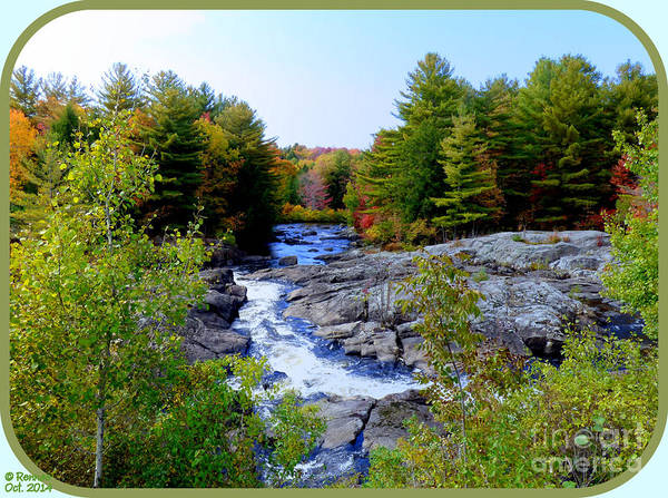 Nature Poster featuring the photograph The View From The Bridge by Rennae Christman