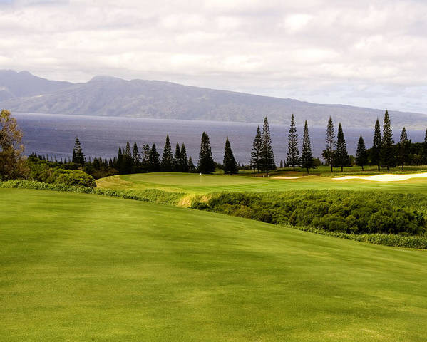 Golf Poster featuring the photograph The View by Scott Pellegrin