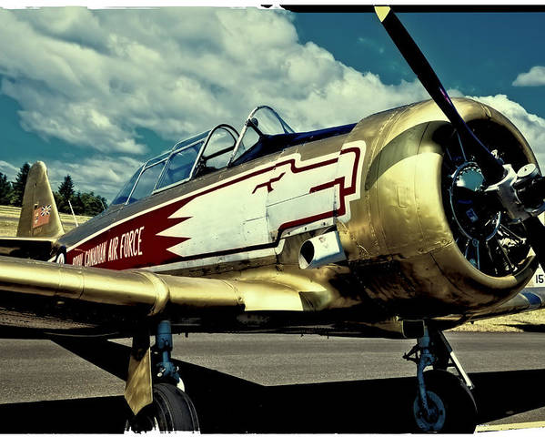 The North American T-6 Texan Poster featuring the photograph The Vintage North American T-6 Texan by David Patterson