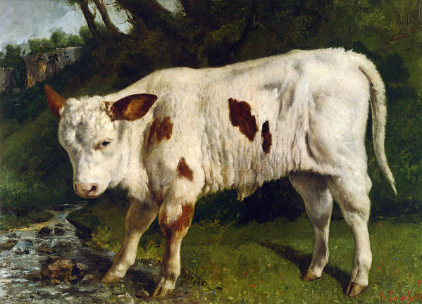 The White Calf Poster featuring the digital art The White Calf by Gustave Courbet