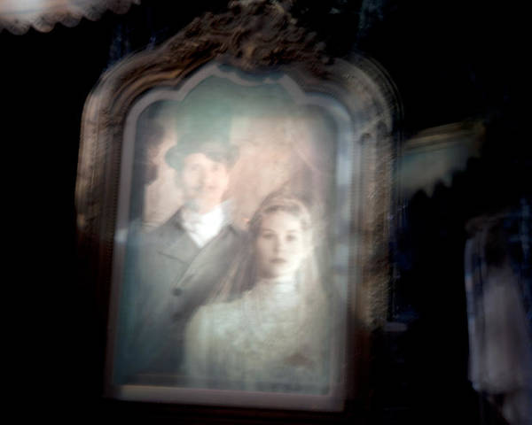 Art Poster featuring the photograph The Widow by Ryan Crane