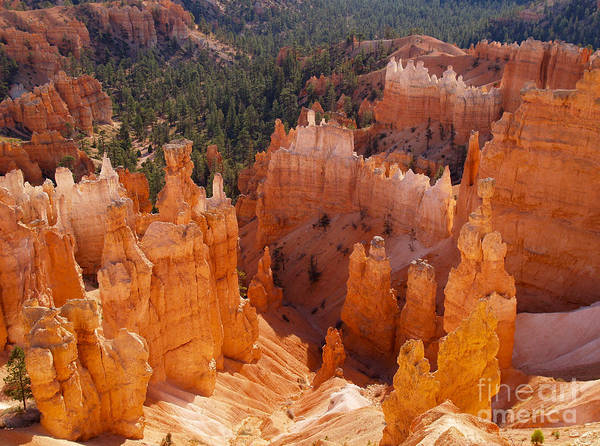 Landscape Poster featuring the photograph Thor's Hammer At Bryce Canyon In Utah by Alex Cassels
