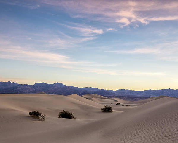 Blue Poster featuring the photograph Three In The Sand by Jon Glaser