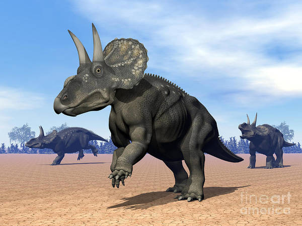 Three Dimensional Poster featuring the digital art Three Nedoceratops In The Desert by Elena Duvernay