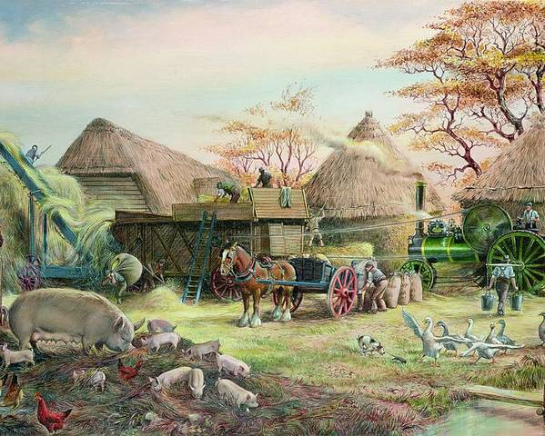 Steam; Thresher; Farmyard Scene; Farm; Yard; Haystack; Farmers; Labourers; Shire Horse; Thatched; Roof; Roofs; Harvest; Family Of Pigs; Pig; Piglets; Sow; Rural; Thatch; Farm Poster featuring the painting Threshing In Kent by Dudley Pout