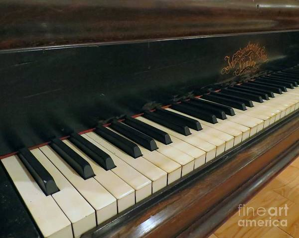 Piano Poster featuring the photograph Tickle The Ivories by Donna Cavanaugh
